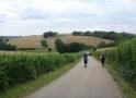 Burgund-0017