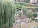 Burgund-0023