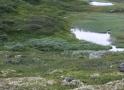 norwegen02-0084