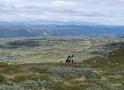 norwegen02-0120